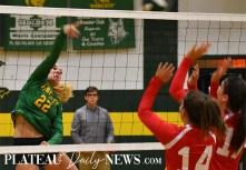 Blue.Ridge.Haywood.Volleyball.feat