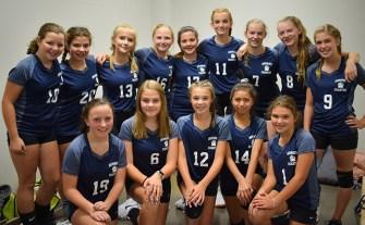 Summit.volleyball.team