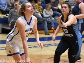 add.Highlands.Basketball (10)
