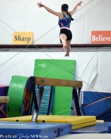 Gymnastics (18)