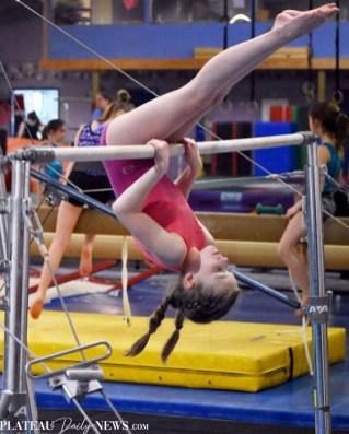 Gymnastics (31)