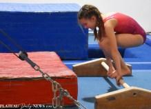Gymnastics (41)