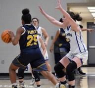 Langtree.Basketball (3)