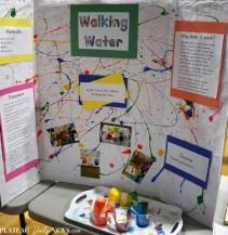 Science.STEM (5)