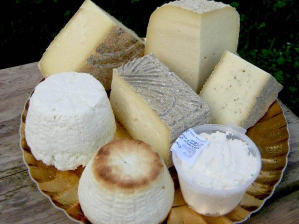 feluri de Brânză artizanala italieneasca de la Asociatia Curtea Culorilor din judetul Timis (6)