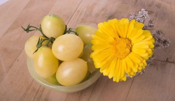Buniol Berrys Crazy Tomato
