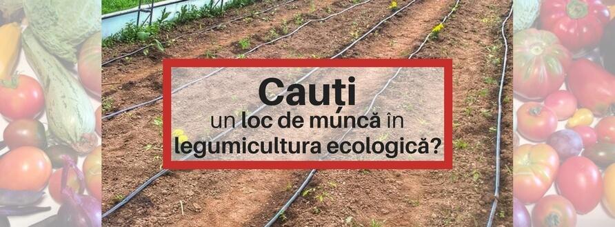 Loc de muncă în agricultura ecologică (Brașov)