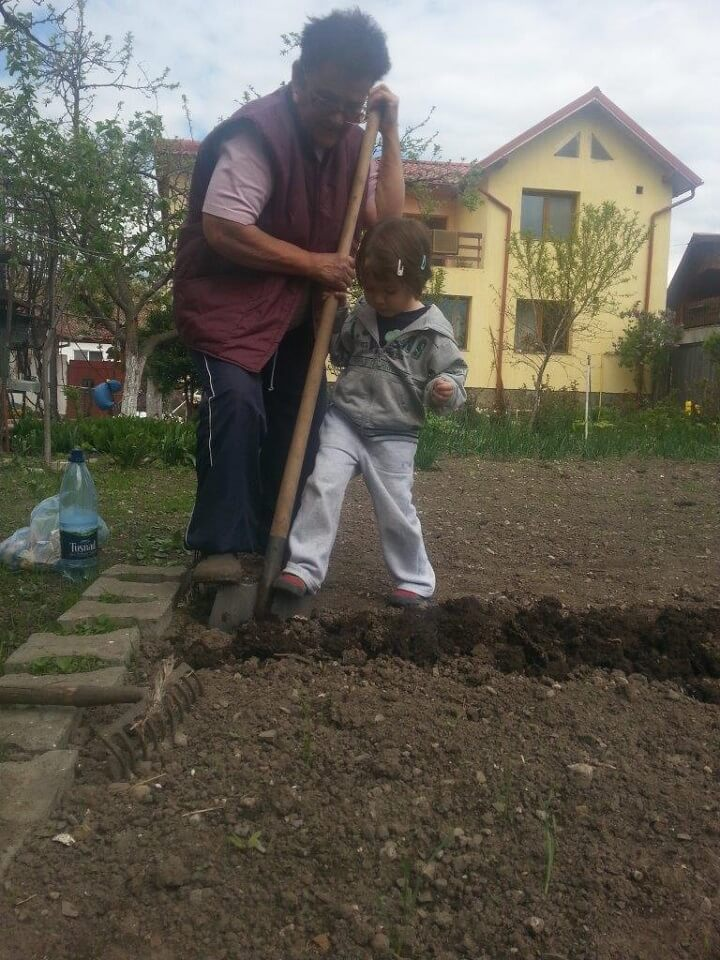 Ferma Harman, judetul Brasov (16)