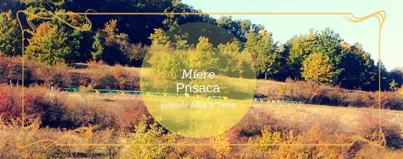 Miere Prisaca, stupină cu recomandare și magazin online