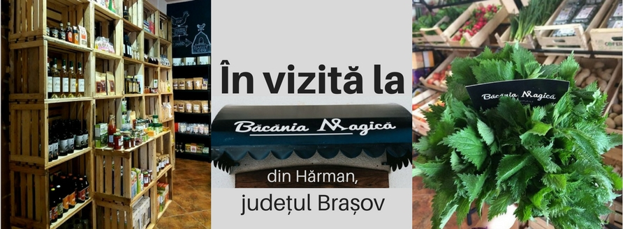 În vizită la Băcănia Magică, Hărman, județul Brașov