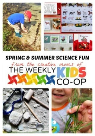 Spring & Summer Science for Kids + The Weekly Kids Co-Op Link Party at B-Inspired Mama