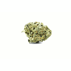 Juicy Fruit (Sativa) Buy Online Canada