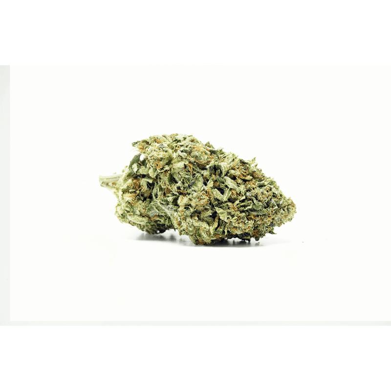 Pumpkin Kush (Indica) Buy Online Canada