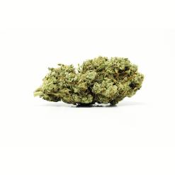 UBC Chemo (Sativa) Buy Online Canada