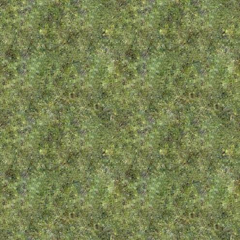 grass-2048