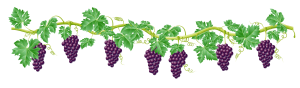 grape-tree-clipart-8