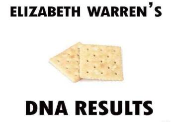 Warren's DNA results
