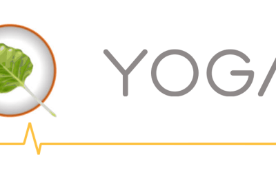 Tools: Installing Bodhi Linux on a Yoga 910