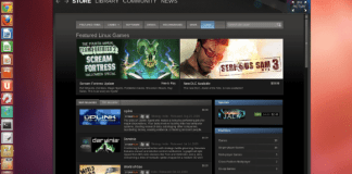 steam-for-linux-games-100054513-large