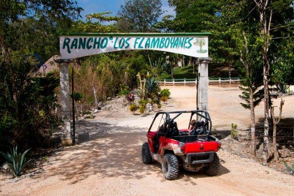 Buggy - Playa del Carmen