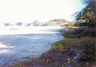 Playa Panamá (Chorotega)