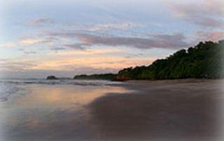 Playa Real y Roble