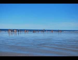 fotos playas doradas 22