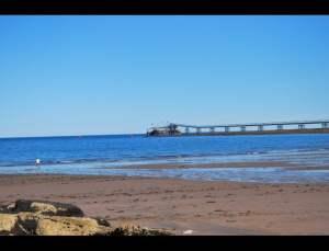 fotos playas doradas 21