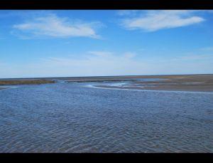 fotos playas doradas 12