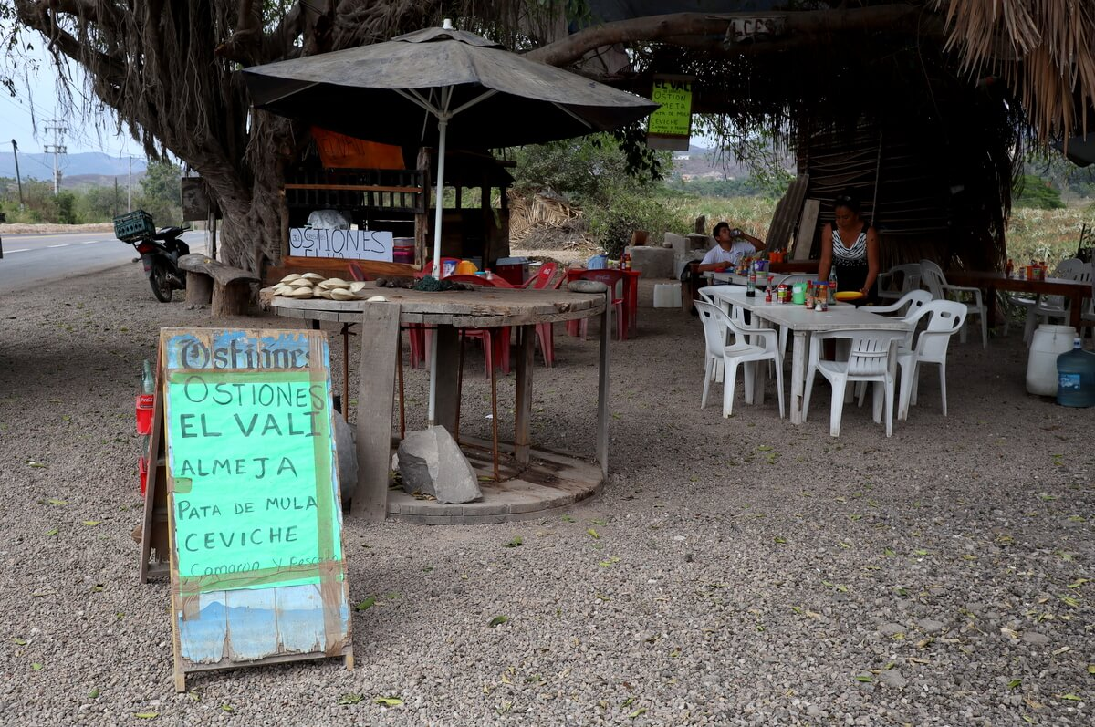 Mexican seafood at its best: Fresh Oysters, Pata de mula clams, and Ceviche in Nayarit, Mexico