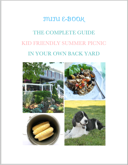 Family picnics are always fun. But it's so easy to forget something essential. Find out exactly what you need to plan a picnic with a toddler or any kid. Including, recipes, crafts, decorations, and activities.