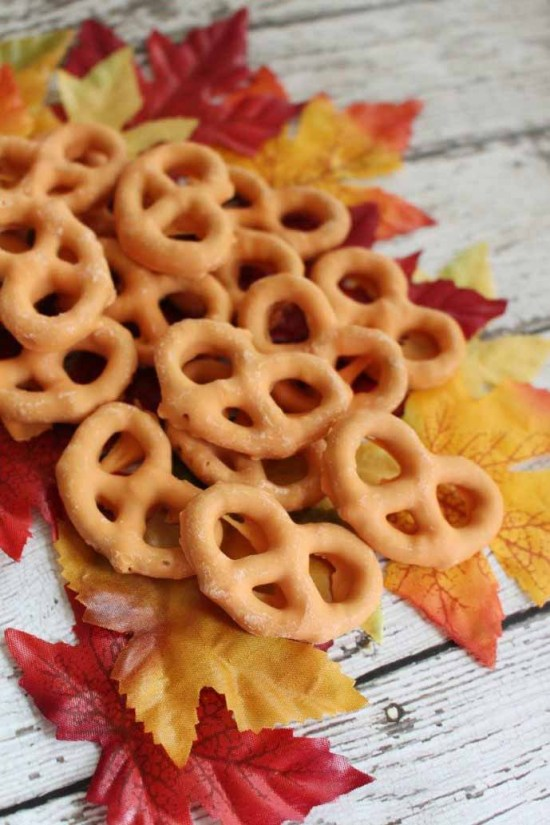 Pumpkin Spice Pretzels by Tamilee Tips