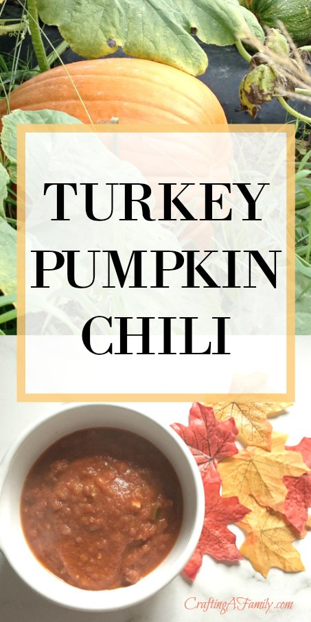 Turkey Pumpkin Chili from Crafting A Family.