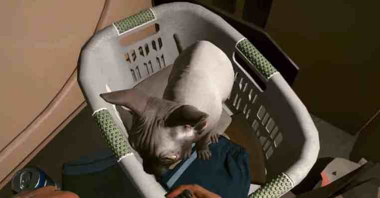 Cyberpunk 2077: How to Get Cat