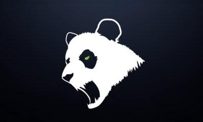 Panda Global ilk Fall Guys espor takımını kurdu