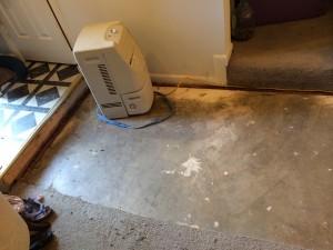 The carpet... er, lack of carpet.