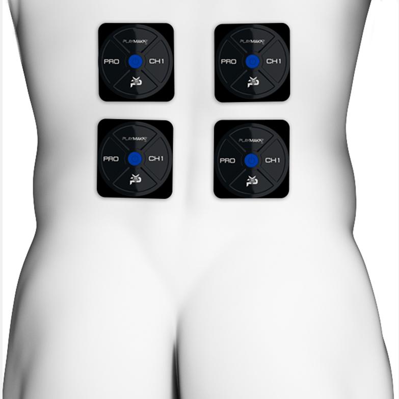 erector spinalis image