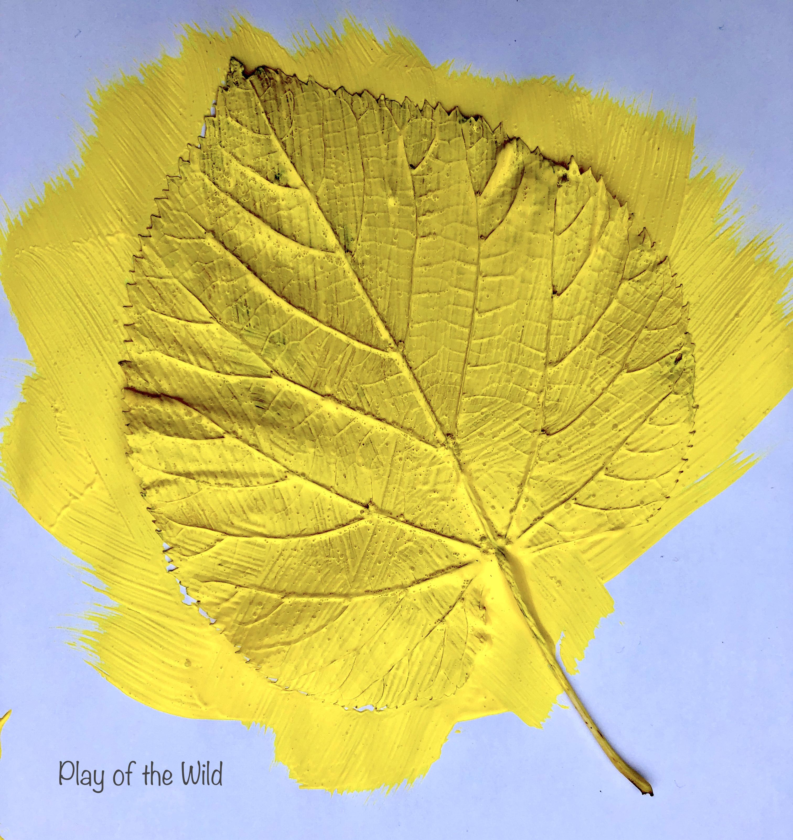 leaf painting outline of leaf.