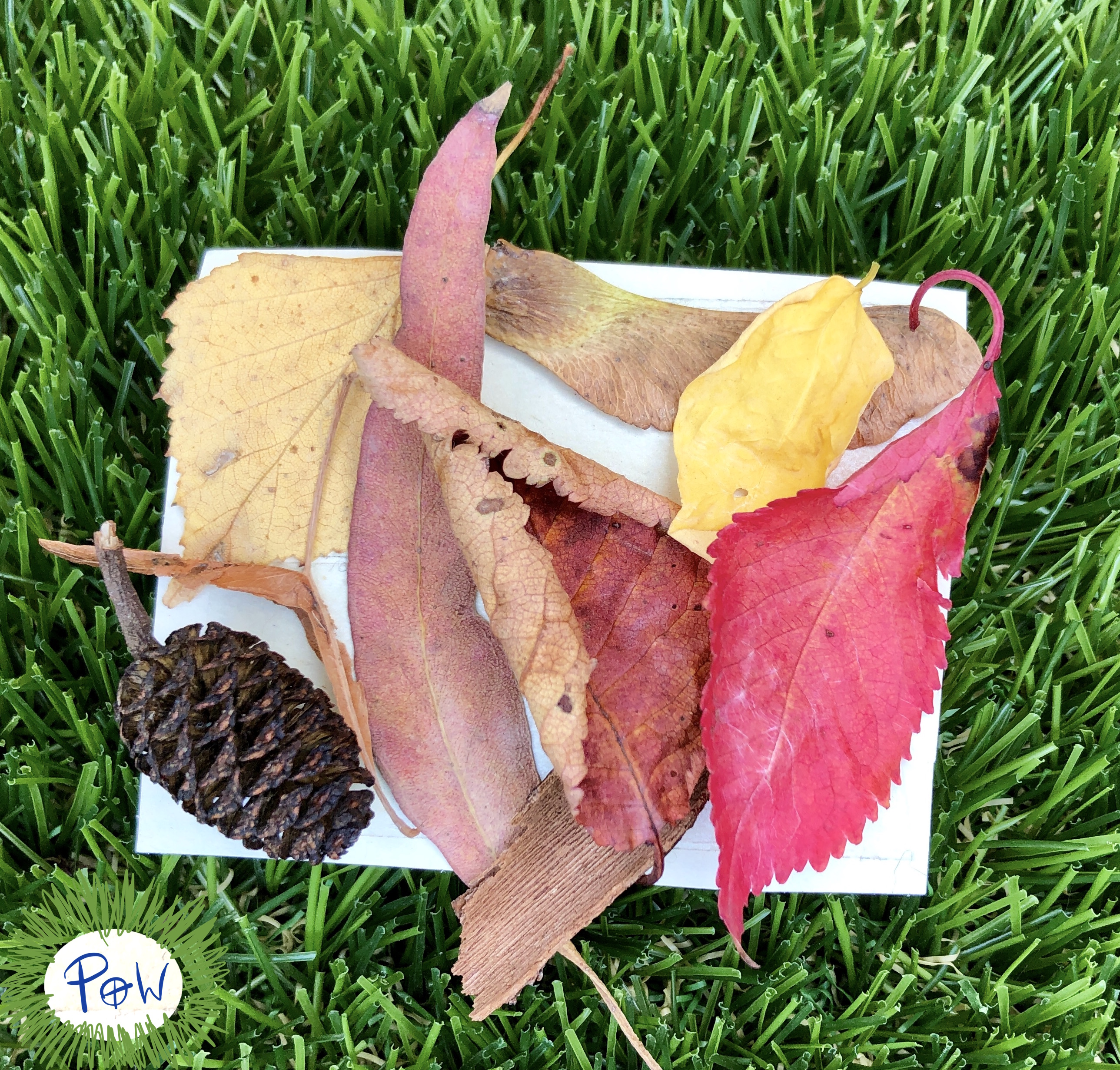 Outdoor Nature Art Activity for children. Miniature art collage.