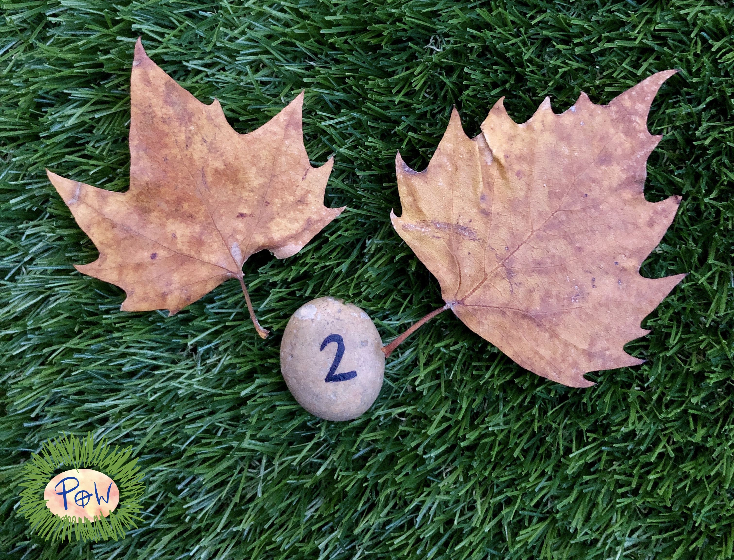 autumn leaf activities for children. Counting leaves and matching to the number. Counting leaves. Preschool maths. Reception maths. Kindergarten counting.