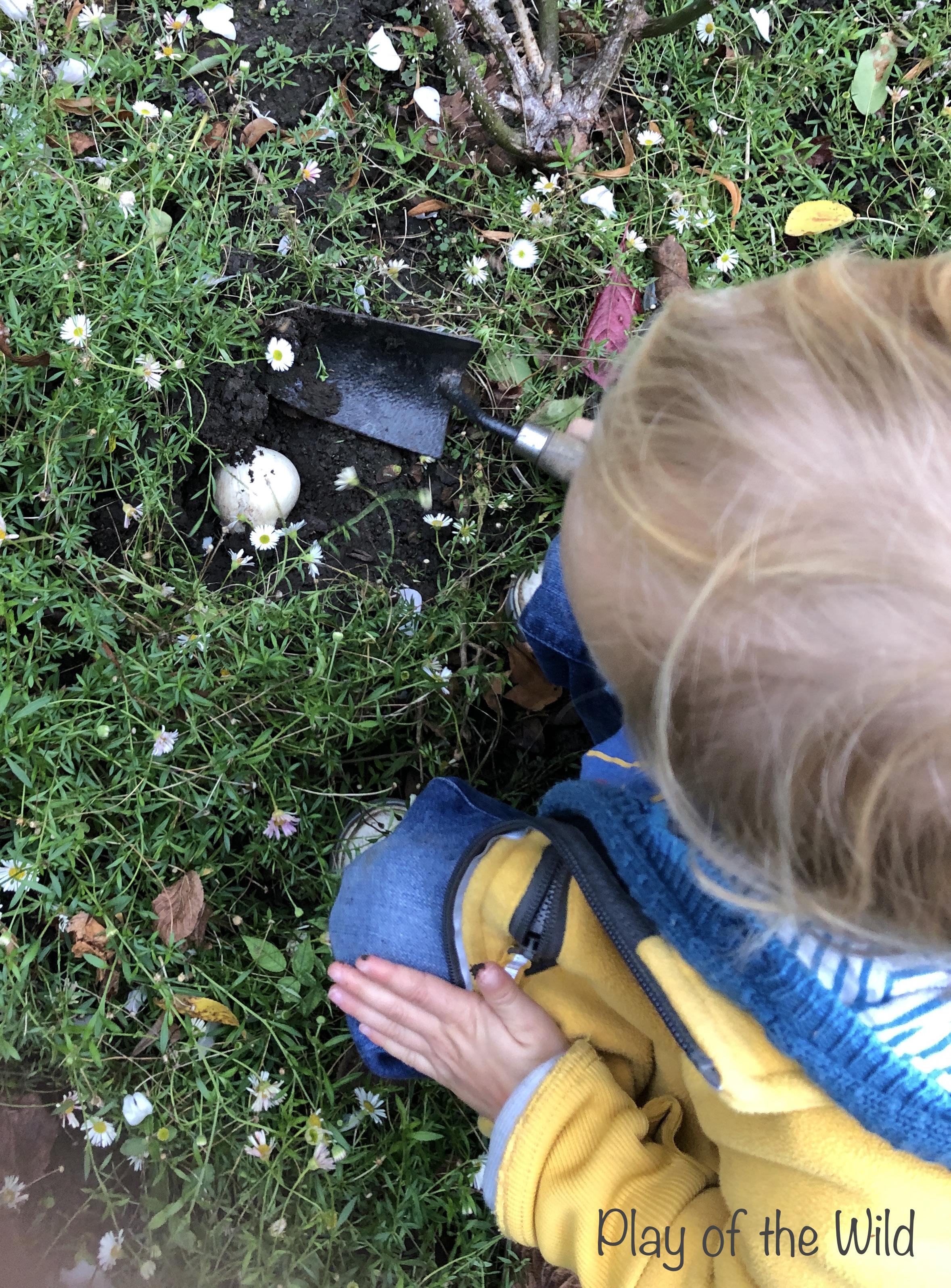 Outdoor Autumn and Winter Garden Activities for Children. Planting bulbs with kids.