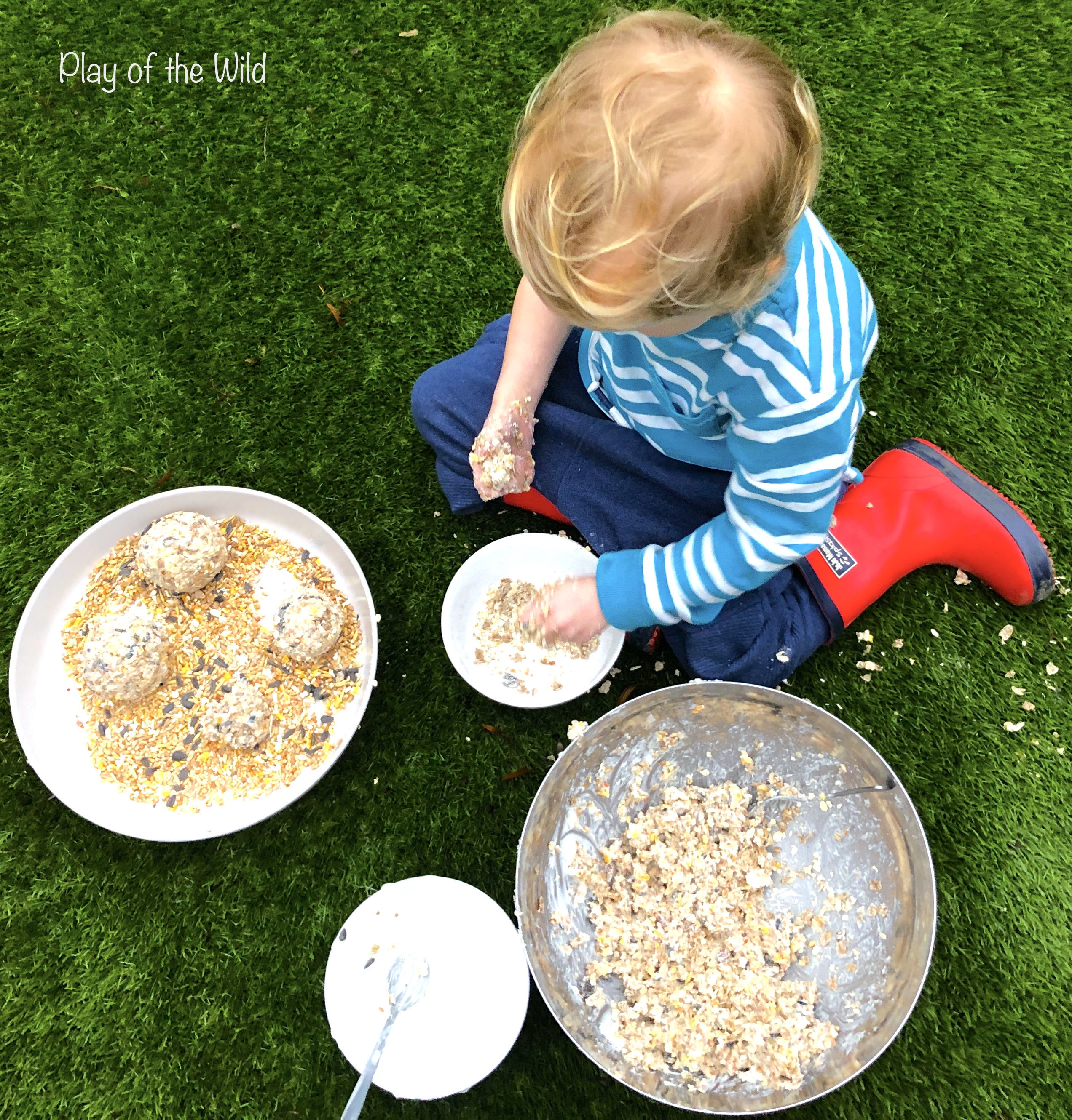 How to make a Bird Feeder without Peanut Butter (Suet Cake)