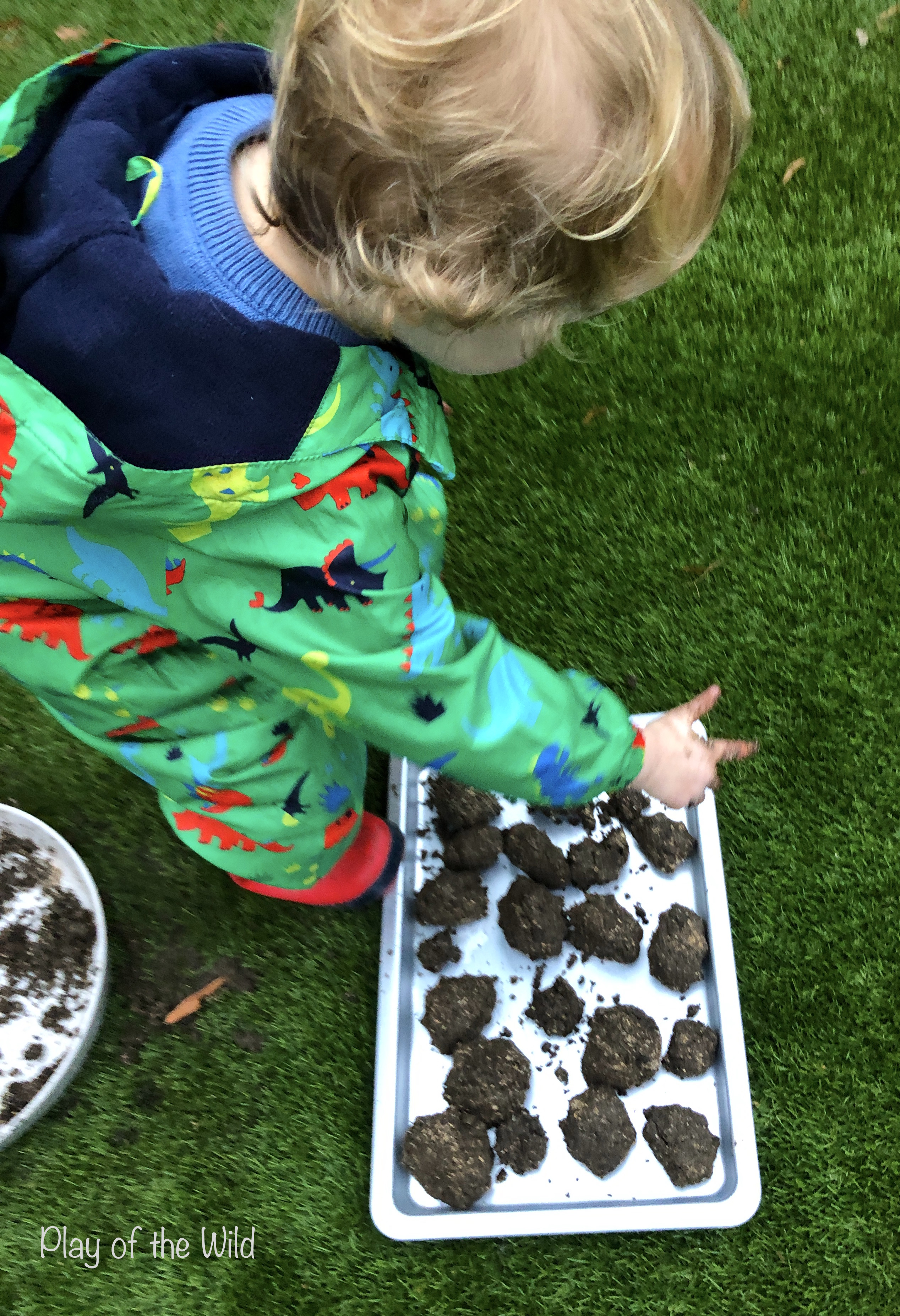 Sowing & Spreading Wild Flowers with Seed Bombs