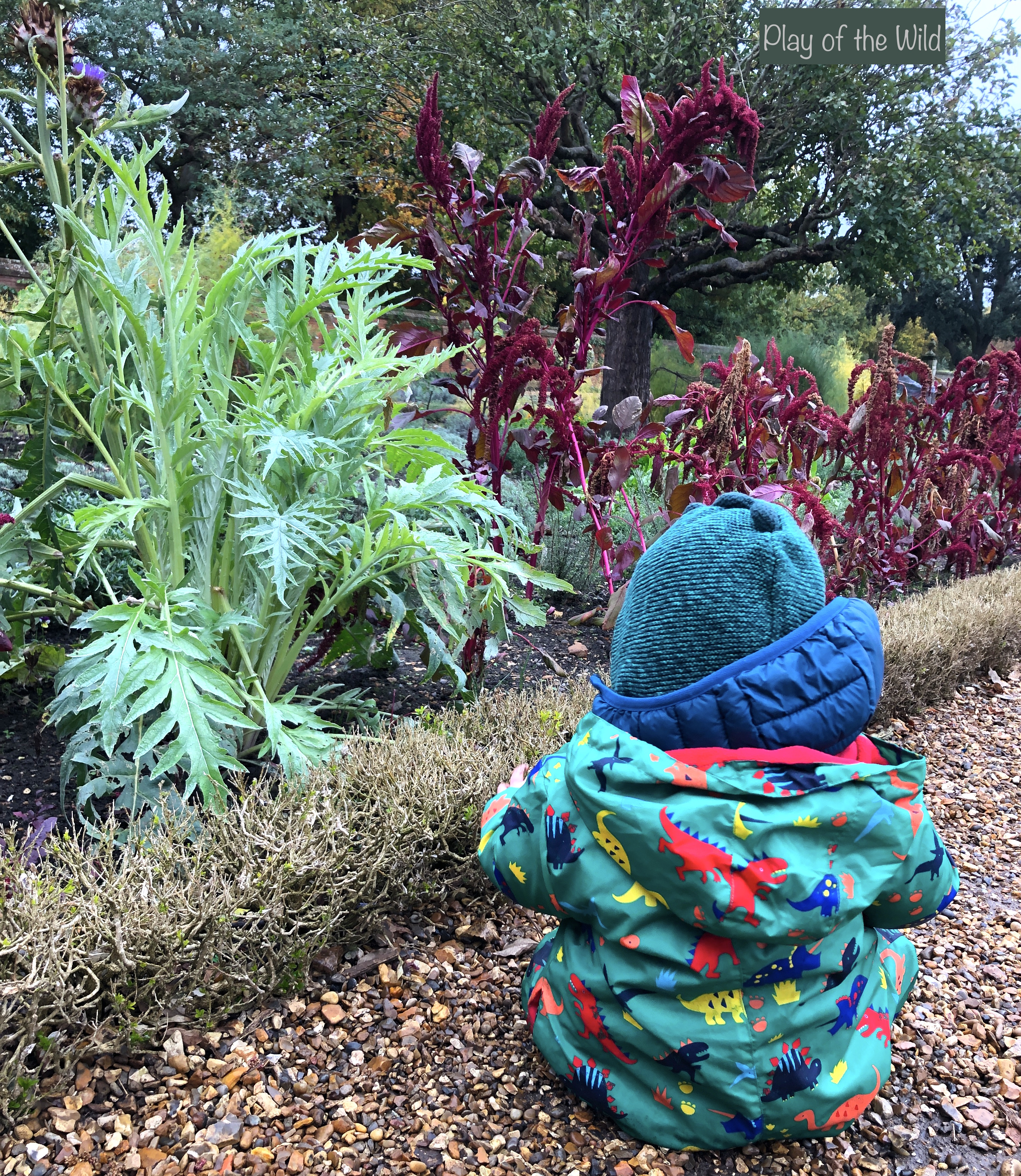 helping children learn about gardening. toddler sitting in winter garden.