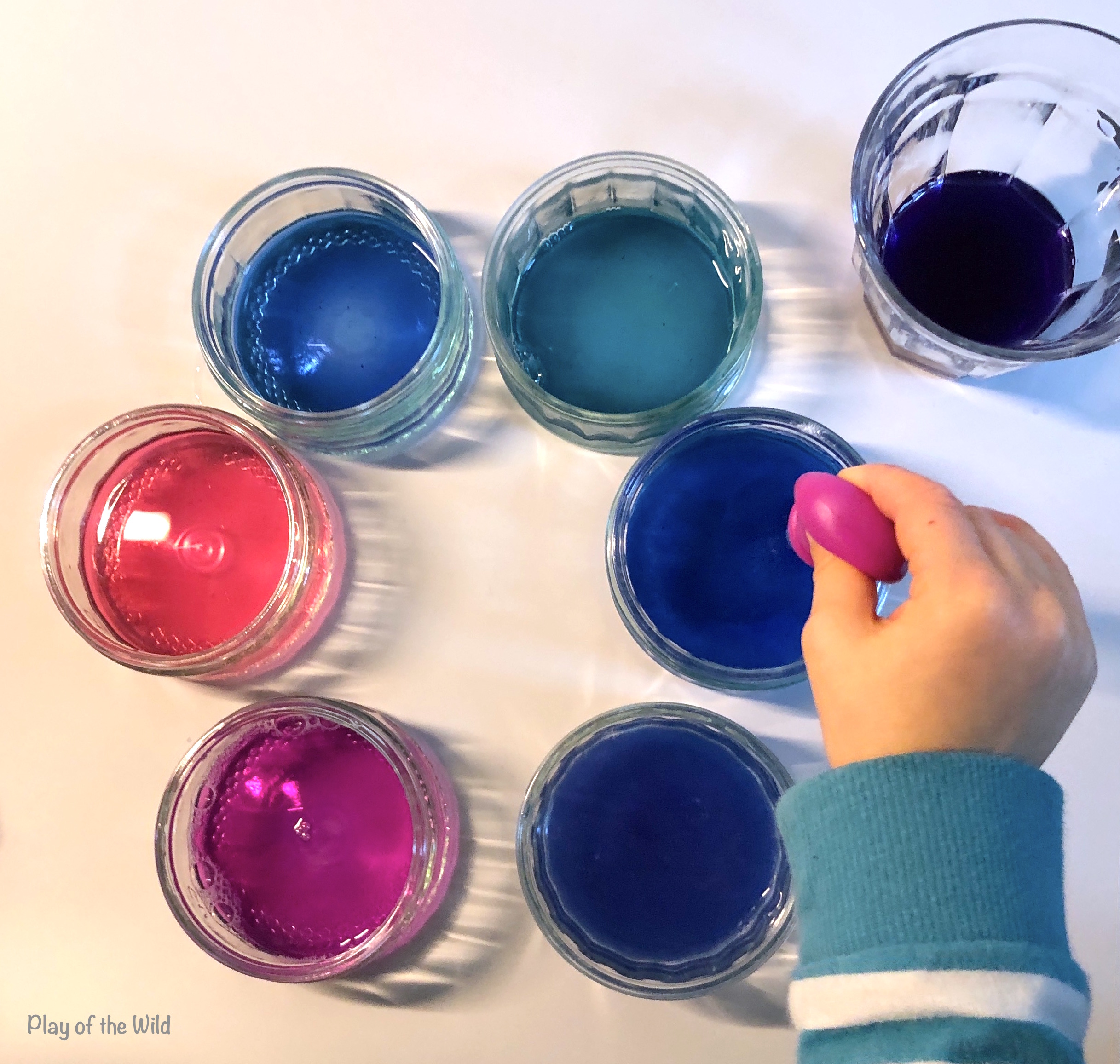 see differences in PH with cabbage juice. Acid and Base Experiment- What is Ph for Kids