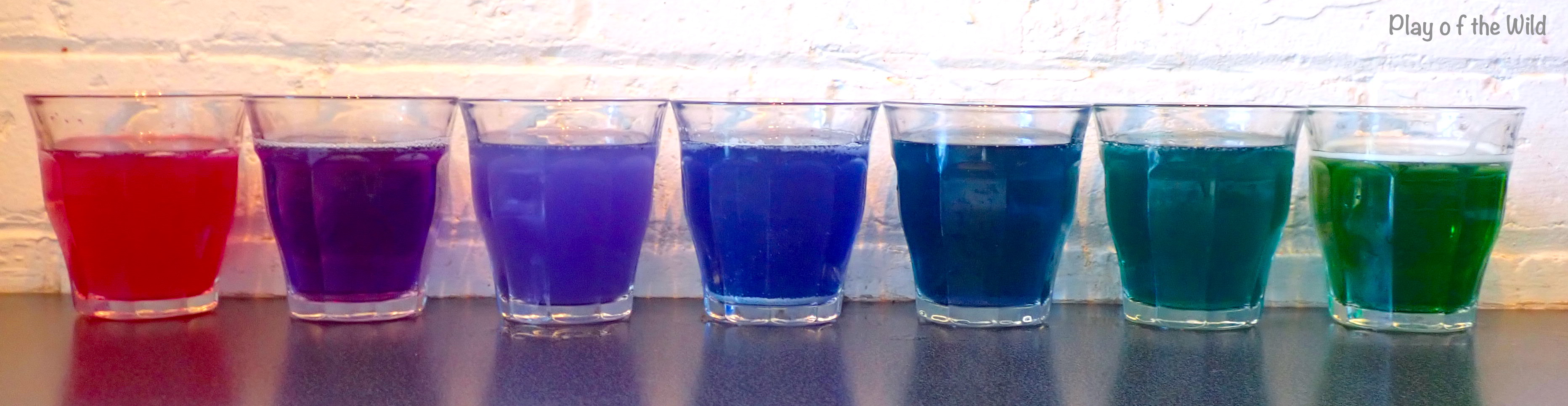 Acid and Base Experiment- What is Ph for Kids. Cabbage juice to show pH.