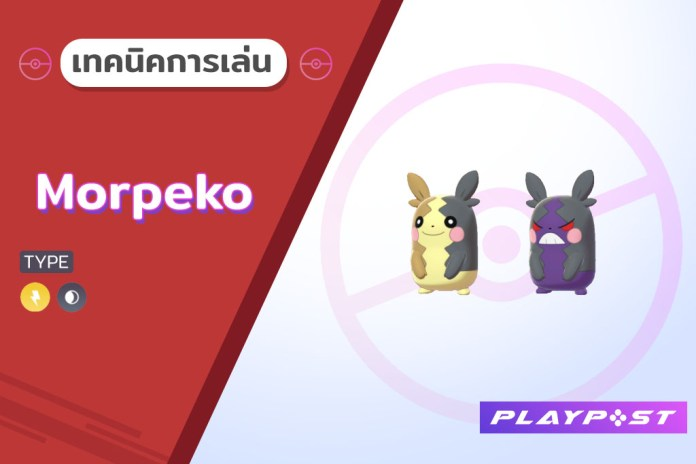 Pokemon SnS Morpeko cover playpost