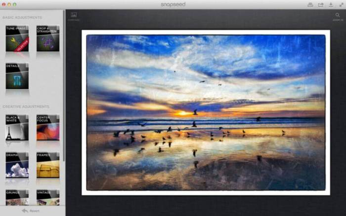 Google Snapseed for PC