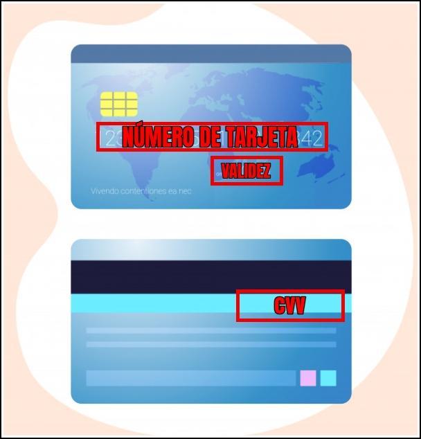 partes tarjeta bancaria