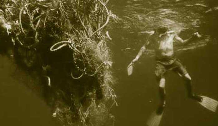 SOS. Grandes manchas de basura oceánica